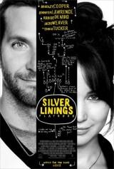 El_lado_bueno_de_las_cosas_Silver_Linings_Playbook-191951758-main